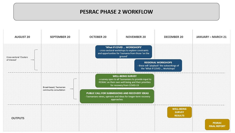 phase 2 consultation workflow